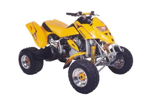 can am ds 250 service manual free download